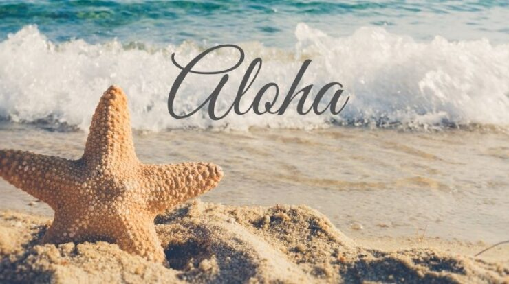 dr hew len interview aloha meaning