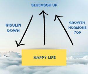 keto diet hormonal equilibrium